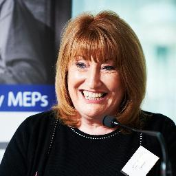Glenis Wilmot MEP